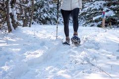 plan rapproché de personne snowshoeing dans la neige fraîche image stock