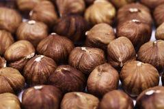 Plan rapproché de pile de noisette Fond de photo de noisette Calibre de bannière de vintage d'aliment biologique photographie stock