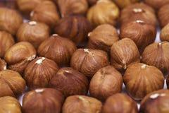Plan rapproché de pile de noisette Fond de photo de noisette Calibre frais de bannière d'aliment biologique photographie stock