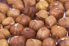 Plan rapproché de pile de noisette Fond de photo de noisette Calibre rustique de bannière d'aliment biologique photographie stock libre de droits