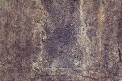 Plan rapproché de plancher de ciment Photographie stock