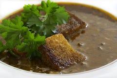 Plan rapproché de plat de soupe à rein photographie stock