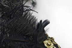 Plan rapproché de plume noire d'isolement Photos stock