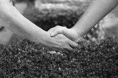Plan rapproché de poignée de main avec le fond de nature Photographie stock