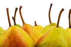 Plan rapproché de poires sur le fond blanc photos libres de droits