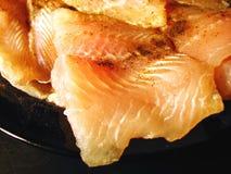 Plan rapproché de poissons Image libre de droits