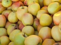 Plan rapproché de pommes Photo libre de droits