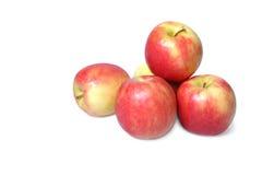 Plan rapproché de pommes d'isolement sur le fond blanc Image libre de droits