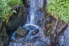 Plan rapproché de précipitation de cascade Images stock
