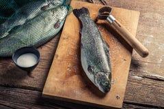 Plan rapproché de préparer des poissons pour le dîner dans la campagne Image stock