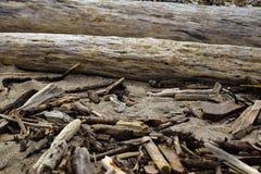 Plan rapproché de rivage de Sandy photographie stock libre de droits
