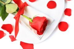Plan rapproché de rose de rouge de la plaque blanche Images stock