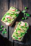 Plan rapproché de sandwich avec du fromage de fromage, l'avocat et le pain croquant Photo libre de droits