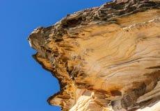 Plan rapproché de Shell comme la formation de roche donnant sur la plage de Bronte, Sydney Australia image libre de droits