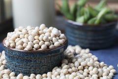 Plan rapproché de soja sec Photographie stock libre de droits