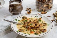 Plan rapproché de soupe à champignons chaude photo libre de droits