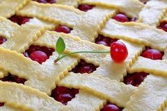 Plan rapproché de tarte aux cerises aigre crue photo libre de droits