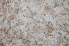 Plan rapproché de texture de pain complet Image stock