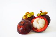 Plan rapproché de trois mangoustans à l'arrière-plan blanc Photo libre de droits