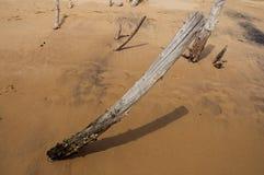 Plan rapproché de tronçon en bois enterré dans le sable le jour nuageux dans Paraty Mirim image libre de droits