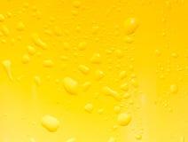 Plan rapproché de verre de bière avec des baisses Photographie stock