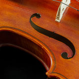 Plan rapproché de violon Photographie stock libre de droits