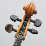 Plan rapproché de violoncelle d'instrument de ficelle de partie avec les pièges et le rouleau Images stock