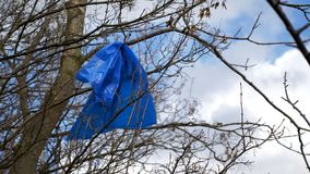 Plan rapproché de vue de jour de la jeune pousse d'arbre polluée et couverte de paix des déchets de plastique à côté de la route  photographie stock libre de droits