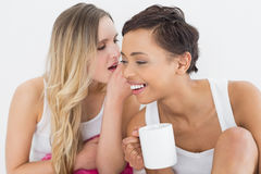 Plan rapproché des amis féminins avec le bavardage de tasse de café Photographie stock libre de droits