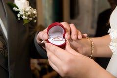 Plan rapproché des anneaux de mariage se situant dans une boîte. Photos libres de droits