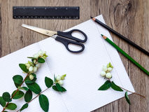 Plan rapproché des articles de statinery sur le fond en bois Décoré des branches vertes de snowberry Vue supérieure, configuratio Photos stock