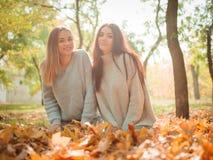 Plan rapproché des belles filles, soeurs de jumeaux, en parc d'automne Photos libres de droits