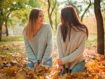 Plan rapproché des belles filles, soeurs de jumeaux, en parc d'automne Photos stock