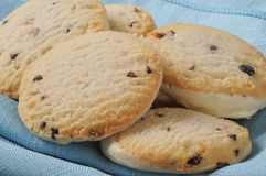 Biscuits gastronomes Photo stock