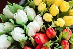 Plan rapproché des bouquets des tulipes colorées, rouge, jaune, blanc à b Images libres de droits