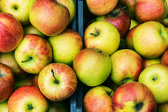Plan rapproché des caisses de pommes fraîches et écologiquement produites juteuses, Photo stock