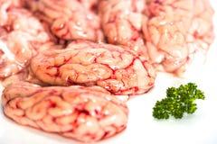 Plan rapproché des cerveaux crus avec le persil images libres de droits