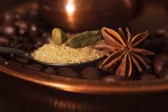 Plan rapproché des cosses, de l'anis et du sucre roux de cardamome dans une cuillère à café Image libre de droits
