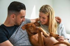 Plan rapproché des couples de sourire tenant le hongrois Vizsla Image stock