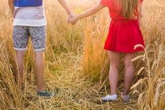 Plan rapproché des couples tenant des mains dans le lever de soleil de nature Photo libre de droits