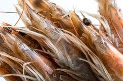 Plan rapproché des crevettes roses fraîches, crues et entières image stock