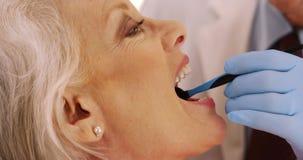 Plan rapproché des dents de examen du ` s de femme agée de dentiste supérieur dans le bureau photographie stock libre de droits
