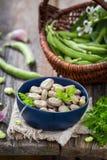 Plan rapproché des fèves savoureuses images stock