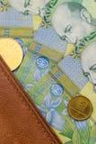 Plan rapproché des factures roumaines d'un leu photos stock