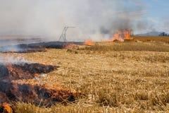 Plan rapproché des flammes brûlant la chaume de blé Photos libres de droits