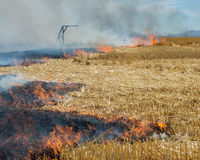 Plan rapproché des flammes brûlant la chaume de blé Photographie stock libre de droits