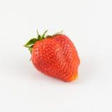Plan rapproché des fraises Images stock