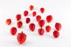 Plan rapproché des fraises Photos stock