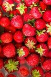 Plan rapproché des fraises parfaites mûres fraîches sur le bain d'eau directement d'en haut Image stock