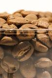 Plan rapproché des graines de café Photo libre de droits